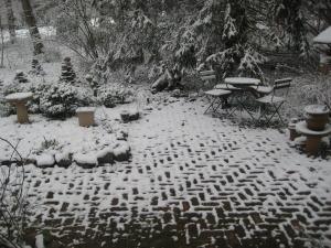 spring snow 2011 001